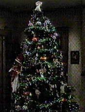 The Ryans' Tree
